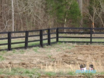 After Fence Staining in Huntersville NC